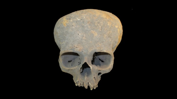 skull from Chichester