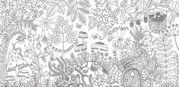 Johanna Basfords First Adult Coloring Book Secret Garden Was Translated Into 14 Languages Outselling The Most Popular Cookbook In Paris